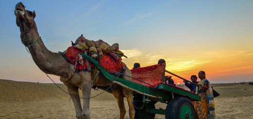 Desert Diary: A Memorable Trip to Jaisalmer