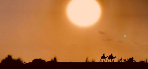 Major Tourist Attractions of the Thar Desert