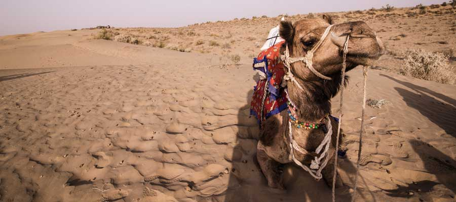 deserts-of-jaisalmer